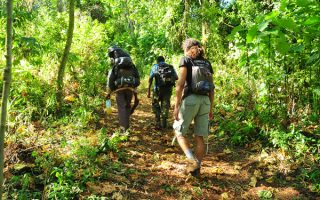 Mount Elgon Safari
