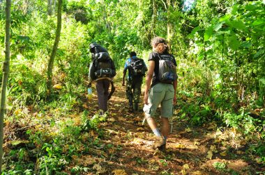 Mount Elgon Safari