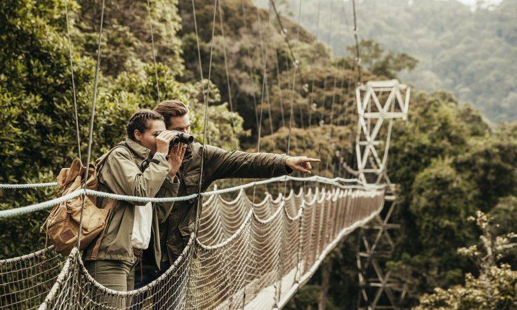 Nyungwe National Park Canopy Walkway