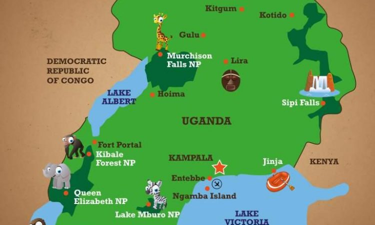 Uganda Safari Guide