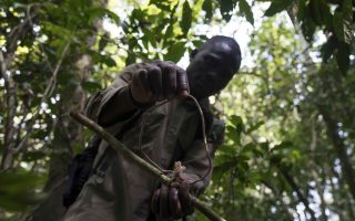 Ngongo Poacher Threats