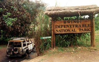 Bwindi National Park Massacre