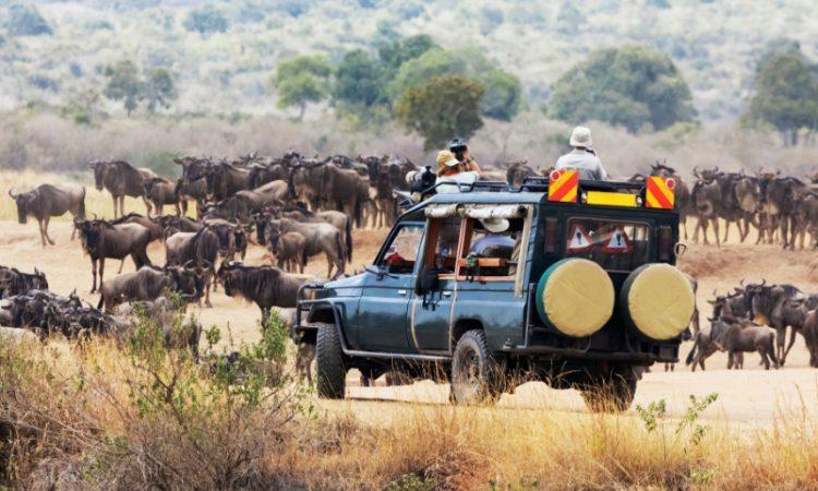 14 Days Kenya & Uganda Safari