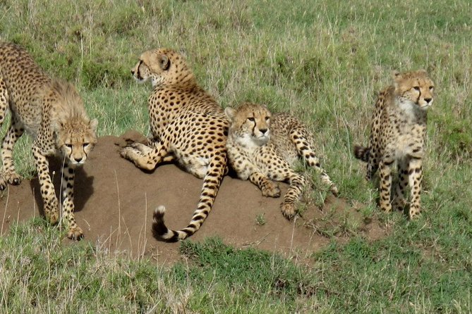 5 Days Sipi Falls and Kidepo National Park Safari