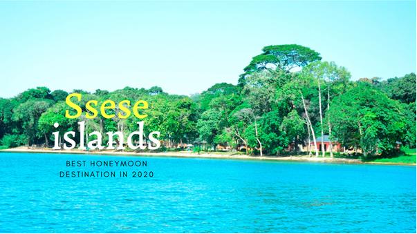 7 Days Ssesse, Ngamba Islands, and Lake Mburo tour
